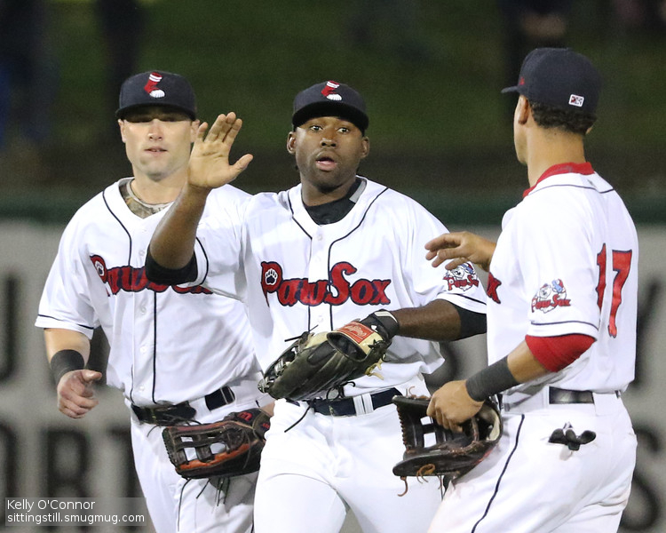 PawSox Overview 2015 IMG 1
